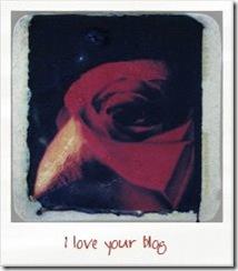 Premio I_Love_Your_Blog